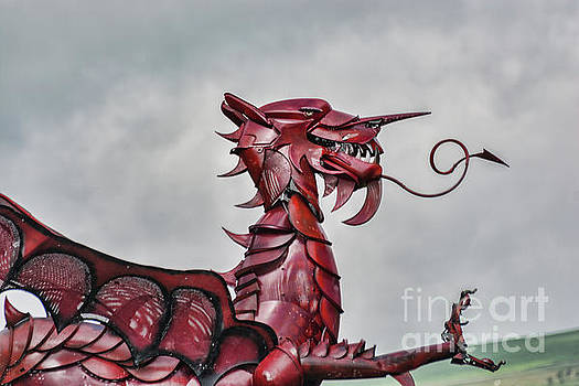 Steve Purnell - Gareth The Dragon 3