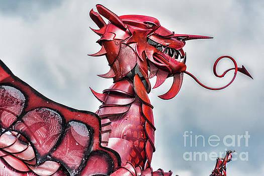 Steve Purnell - Gareth The Dragon 5