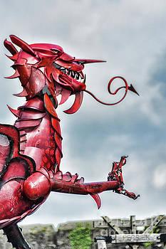 Steve Purnell - Gareth The Dragon 6