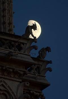 Gargoyle Night Watch by Matthew Green