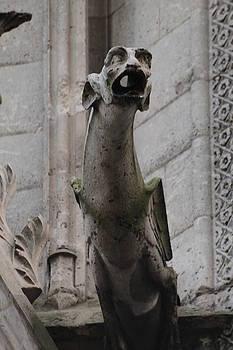 Gargoyle Notre Dame by Christopher Kirby