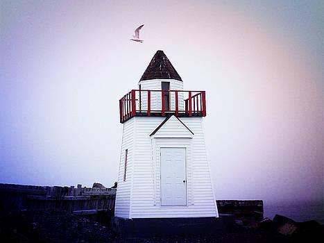 Garnish Lighthouse by Zinvolle Art
