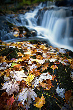Garwin Falls Color by Eric Gendron