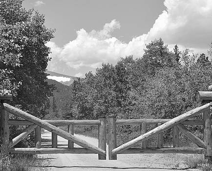 Gates to Divide by Sue Rosen