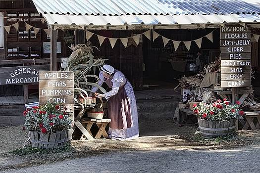 Gathering Autumn's Harvest - Country Store by Chrystyne Novack
