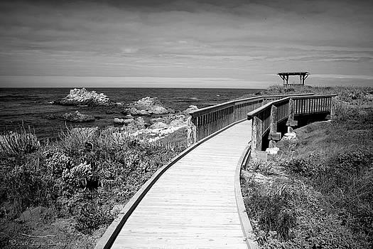 Joyce Dickens - Gazebo Boardwalk At Asilomar B And W