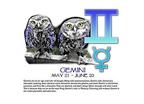 Gemini Sun Sign by Shelley Overton