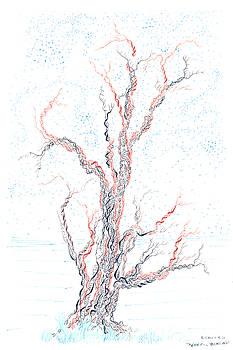 Genetic branches by Regina Valluzzi