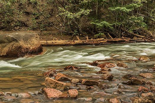 Geneva Creek Guanella Pass Road by Lois Lake