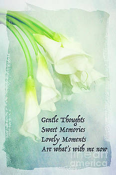 Gentle Thoughts by Marilyn Cornwell
