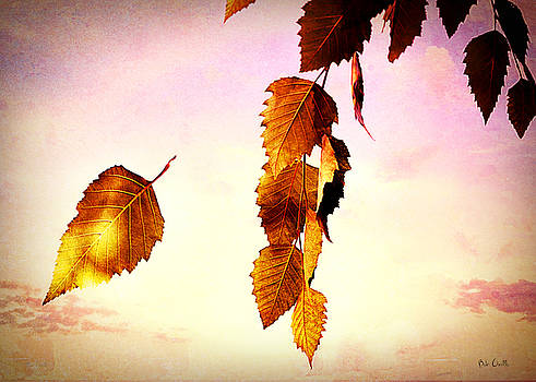 Gently September by Bob Orsillo
