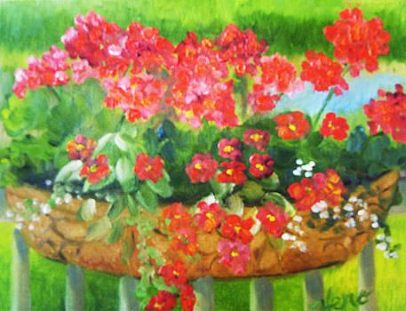 Geraniums in Basket by Marcia  Hero