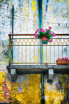 Geraniums on old balcony    by Silvia Ganora