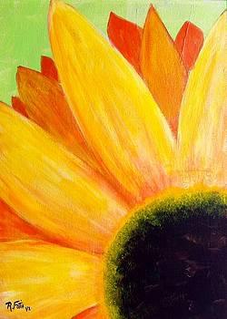 Gerber Daisy by Rich Fotia