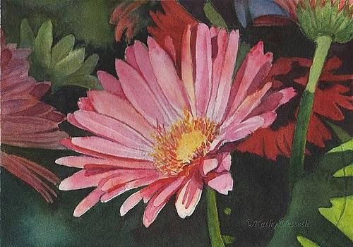 Gerbera Daisy by Kathy Nesseth