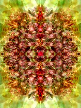 Ghandi's Vision by Lynzi Wildheart