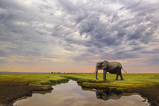 Giant Serenity by Mario Moreno
