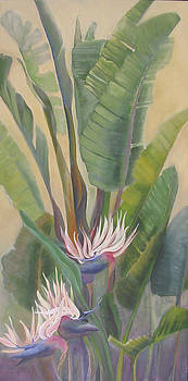 Giant White Bird of Paradise No.1 by Eve Corin