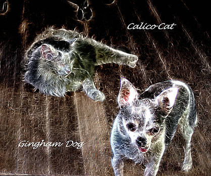 Gingham Dog and Calico Cat by Aliceann Carlton