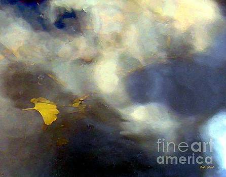 Dale   Ford - Ginkgo Leaf in Puddle