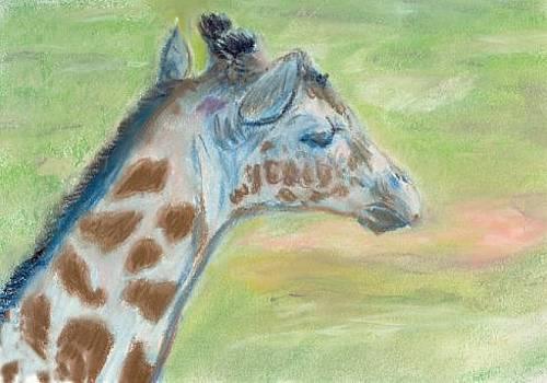 Giraffe baby by Lisa Guarino