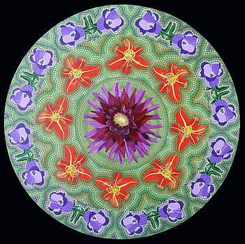 Giverny Mandala by Amanda Lynne