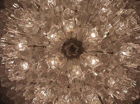 Glass Flower by Anna Villarreal Garbis