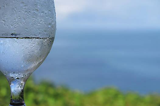 Glass Half Full by JoAnn Lense