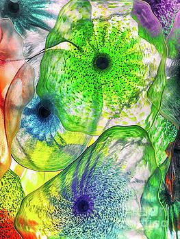 Glass Harmony by Kasia Bitner