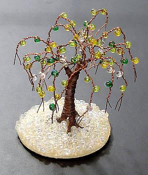 Glass Oak by Sal Villano