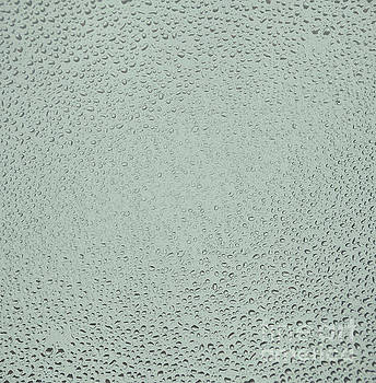 Patricia Hofmeester - Glass with waterdrops
