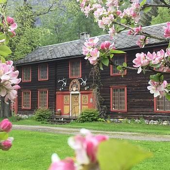 norske piker Oslo
