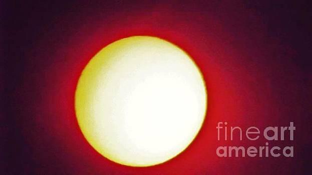 glorious Sun by John Williams