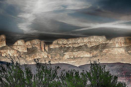 Glory of Nature by Judy Hall-Folde