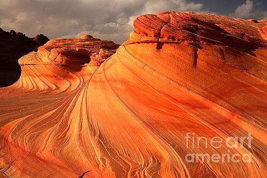 Adam Jewell - Glowing Desert Dragon
