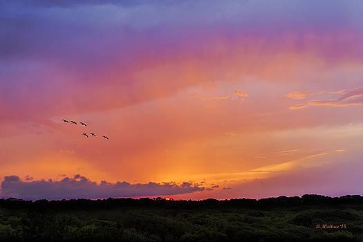 Glowing Horizon by Brian Wallace