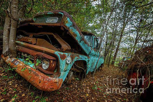 Gmc Truck by Doug Sturgess