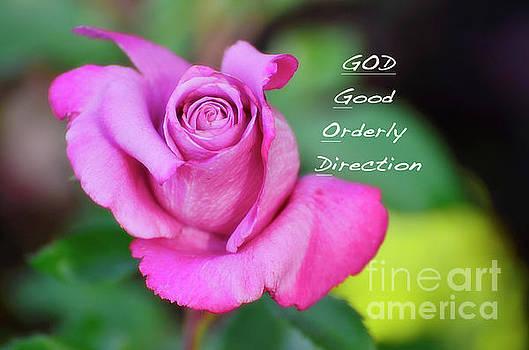 God Equals Rose by Debby Pueschel