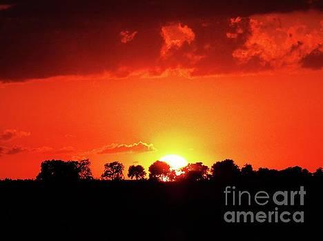 God's Gracful Sunset by J L Zarek