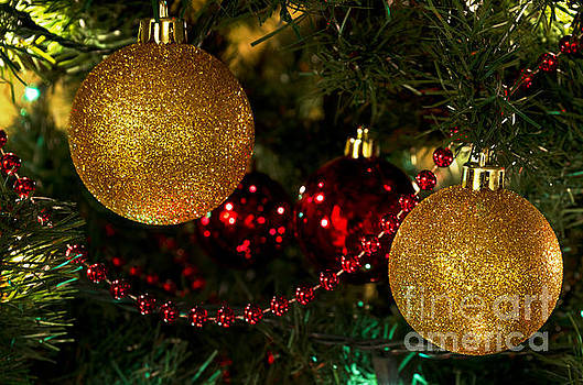 Gold Ball Christmas Ornaments on Tree by Maria Janicki