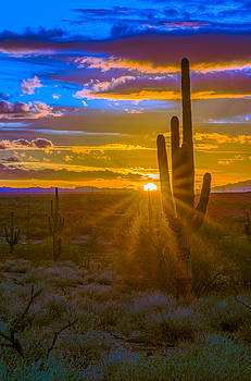 Gold Canyon Sunset by Casey Stanford
