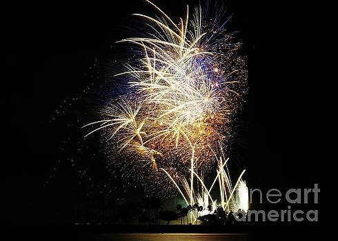 Gold Flecked 4th of July by Craig Wood