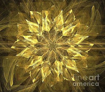 Gold Star Flower by Kim Sy Ok