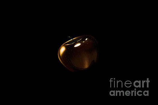 Golden Apple by Mim White