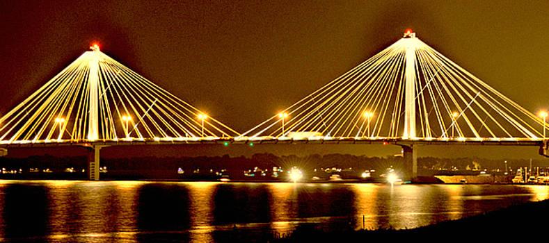 Marty Koch - Golden Bridge