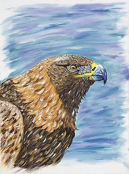 Golden eagle by Scott Wilmot