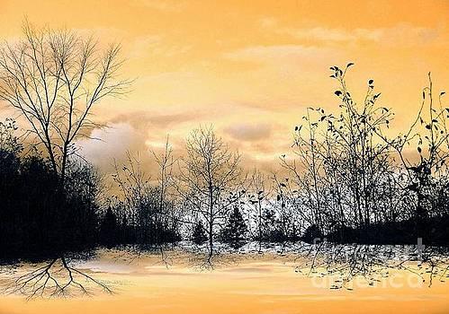 Golden by Elfriede Fulda