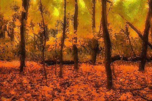 Golden Forest by Jeff Breiman
