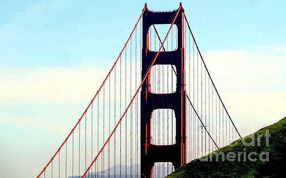 Golden Gate Bridge San Francisco California by Michael Hoard