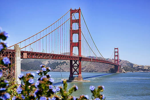 Kelley King - Golden Gate